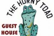 The Horny Toad Guest House