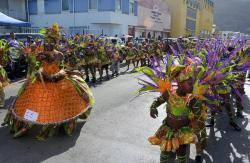 Survivors Troupe Sweeps Carnival Children's Parade